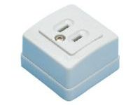 Domestic Blade Model Outlet, Exposed Outlet/2-Prong, 2-Prong + Ground Model