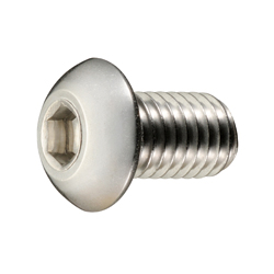 Button Bolt with Hexagonal Hole
