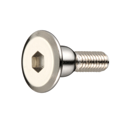 Joint Connector Bolt (A Type) - JCB-A (Hex Socket)