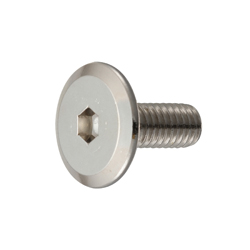 Joint Connector Bolt (B Type) - JCB-B (Hex Socket)