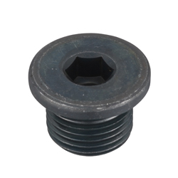 Hex Socket Screw Plug With Flange_SFF