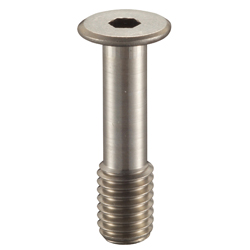 Hex Socket Head Ultra Low Head Fall Prevention Screw, SSCHS