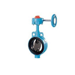 Rubber Seated Butterfly Valve 602A-G (Gear Type)