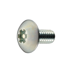 Tamper Resistant LR Truss Head Machine Screw