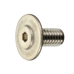 Thin Head (TP Type) Small Screw