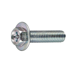 Hex TP Small Screw with Phillips Head