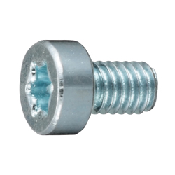 Low Head TORX Recess Bolt
