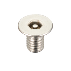 Tamper Resistant Set Screw with Flat Hex Hole