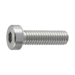 Fully Threaded Stainless Steel Hex Low Head Bolt
